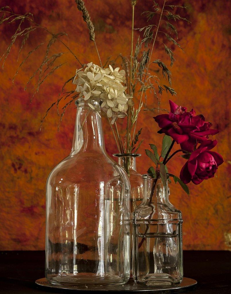 Grass-and-Bottles-Still-Life-3.jpg
